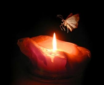 flame_zpsc73445e5