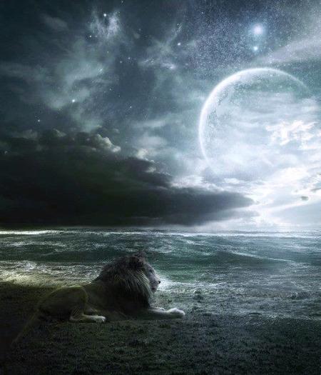 moon-lion